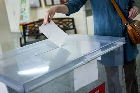 Правительство Литвы поддерживает референдум о двойном гражданстве