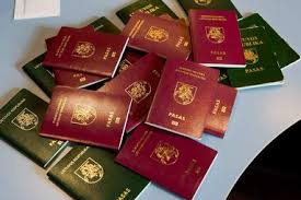 Новая поправка позволяет сохранить двойное гражданство для литовцев, родившихся за границей