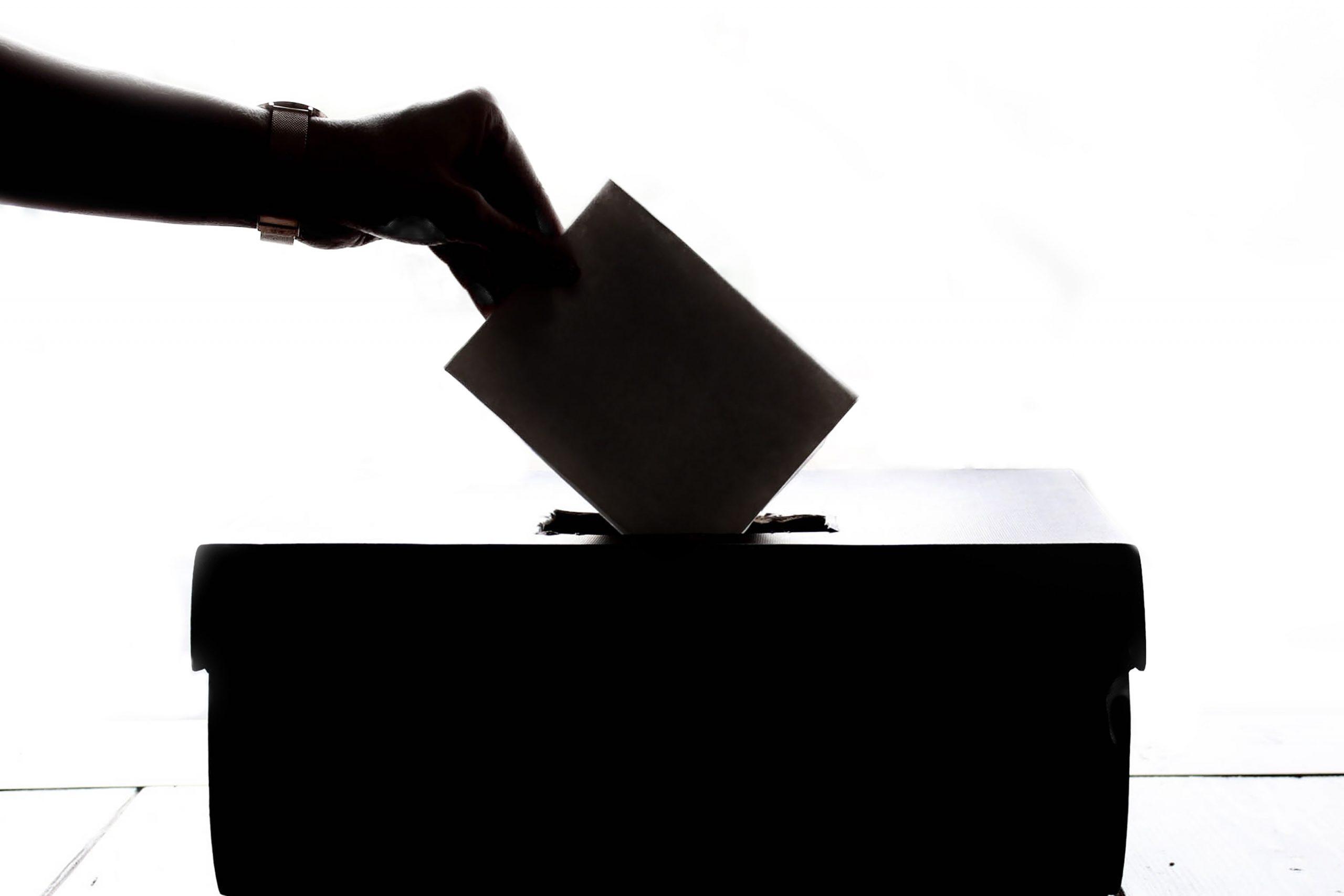 referendum lithuanian dual citizenship 1 scaled